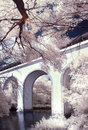 Infrared landscape in park with bridge over the river Stock Photos