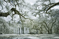 Infrared photo church ruin live oak trees Stock Photo
