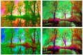 Infrared trees Royalty Free Stock Photo