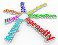 Ingenuity Specialty Skill Insight Knowhow 3d Words Background Royalty Free Stock Photo
