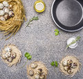 Ingredients for cooking fried quail eggs, oil and salt and herbs place for text,frame granitic rustic background top view clos Royalty Free Stock Photo