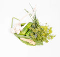 Ingredients for making brined pickles Royalty Free Stock Photo