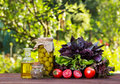 Ingredients for summer salad. Olives, basil, tomatoes and olive oil on the table. Green olives in a glass jar. Royalty Free Stock Photo