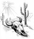 Bull skull in desert