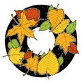 stock image of  Ink drawing autumn foliage round frame, maple and birch leaves, green, orange, yellow