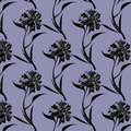 Ink drawing black peony flowers pattern on purple background