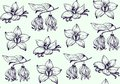Ink flowers pattern hand drawn vector
