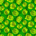 Ink seamless pattern with palm leaves and flowers in sketchy sty Royalty Free Stock Photo
