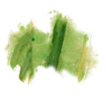 Ink splatter watercolour green dye liquid watercolor macro spot blotch texture isolated on white background Royalty Free Stock Photo