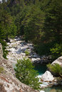 Inland Corsica, splendid Restonica Valley Royalty Free Stock Images