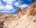 Inland northern fuerteventura barranco dry river bed close to lajares Stock Photography