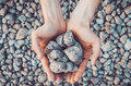 Inner balance concept: hands holding stones, land background. Earth day, eco friendly. Nature wallpaper. Symbol of Royalty Free Stock Photo