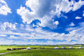 Inner mongolia grassland golden horde khan eastphoto tukuchina nature beauty Royalty Free Stock Photo