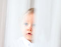 Innocent baby portrait seen through white courtains Stock Image