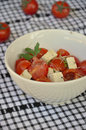 Insalata caprese vegetarian with tomatoes tofu and sprouts Stock Image