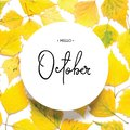 Inscription Hello October. Pattern of yellow autumn leaves isolated on white.