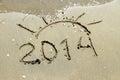 Inscription 2014 on sea sand beach Royalty Free Stock Photo