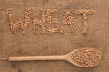 Inscription wheat with a wooden spoon on burlap can be used as background Royalty Free Stock Photography