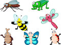 Insect cartoon Stock Images