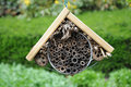 Insect hotel an is a man made structure created from natural materials to give home to the different insects Royalty Free Stock Photo