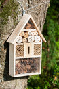 Insect hotel on a tree Royalty Free Stock Image