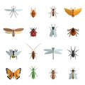 Insect Icon Flat Royalty Free Stock Photo