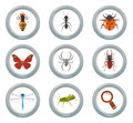 Insect icons set Stock Photos