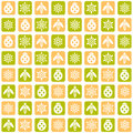 Insect pattern flower and sample squares vector illustration Royalty Free Stock Photography