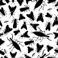 Insect seamless pattern with silhouettes Stock Images