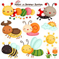 Insect in Summer Season vector Set