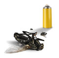 Insecticide spray bottle with dead flies can and on white background Stock Photo