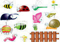 Title: Insects and Animals in backyard
