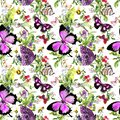 Insects - butterflies, bees, dragonfly in field flowers, summer berries, wild herbs, meadow grass. Seamless background