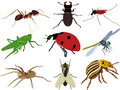 Insects collection vectors sets  Royalty Free Stock Photos