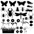 Insects and flowers. Royalty Free Stock Photo