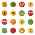 Insects Icons Flat Royalty Free Stock Photo