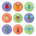 Insects icons vector flat style on white background.