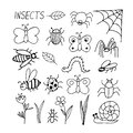 Insects set hand drawn elements in doodle style. vector scandinavian butterfly, caterpillar, beetle, spider, bee, wasp, flower, Royalty Free Stock Photo