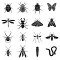 Insects set icons in black style. Big collection of insects vector symbol stock illustration Royalty Free Stock Photo