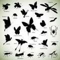 Insects silhouettes set of insect on abstract background Stock Photos