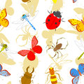 Insects vector seamless pattern of Stock Images