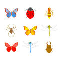Insects vector set icons of Royalty Free Stock Photography