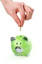 Insert coin in green piggy bank Stock Images