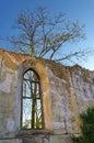 Inside church ruins Royalty Free Stock Photo