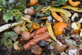 Inside of a composting container Royalty Free Stock Photo