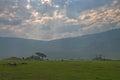 Inside Ngorongoro crater Royalty Free Stock Photo