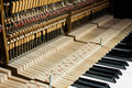 Inside of the piano a removed baffle can see all internal structure Royalty Free Stock Images