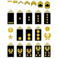Insignia of the iranian army military ranks and world illustration on a white background Stock Photo