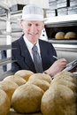 Inspector examining loaves of bread in bakery Royalty Free Stock Photo