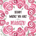 Inspiring quote 'Bloom where you are planted' hand painted brush lettering on the hand painted rose backdrop.